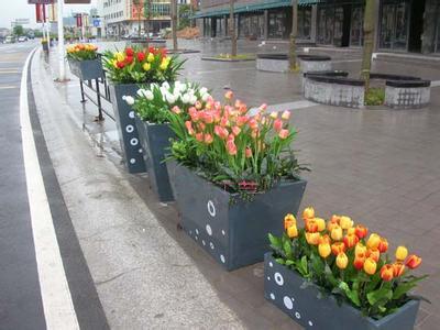 幼儿园食用油桶装饰花盆